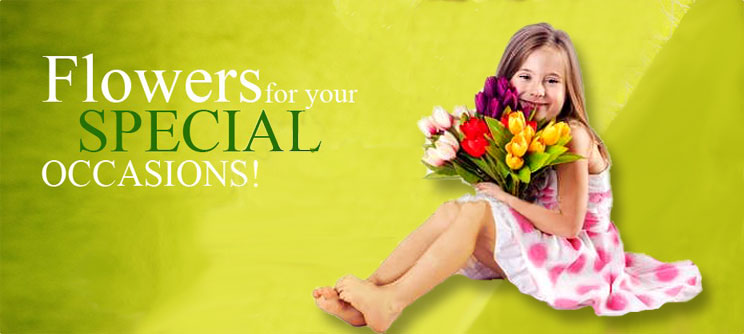 Baby Flowers Banner