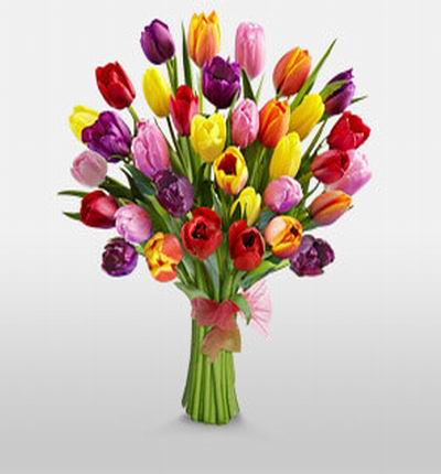 35 Mixed Tulips