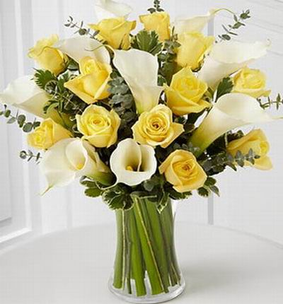 Calla Yellow Premium