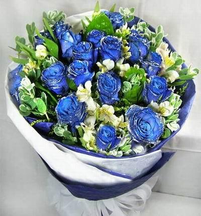 Blue 18