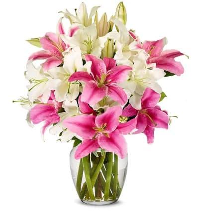 Stunning White Pinkly